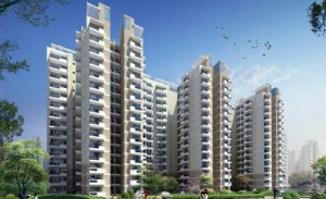 CHD Developers, Quarterly results, Gurgaon real estate news, Chandigarh real estate news, Gurgaon Avenue 71, realty news india, property news india, track2realty, track2media, ravi sinha