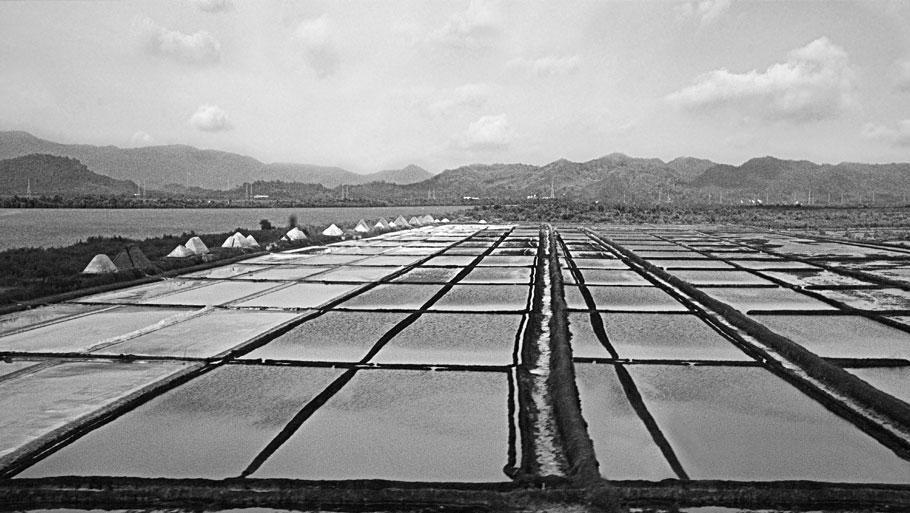 Salt Pans Land Mumbai