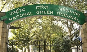 NGT, National Green Tribunal, India real estate news, Indian realty news, Real estate news India, Indian property market, Track2Media Research, Track2Realty